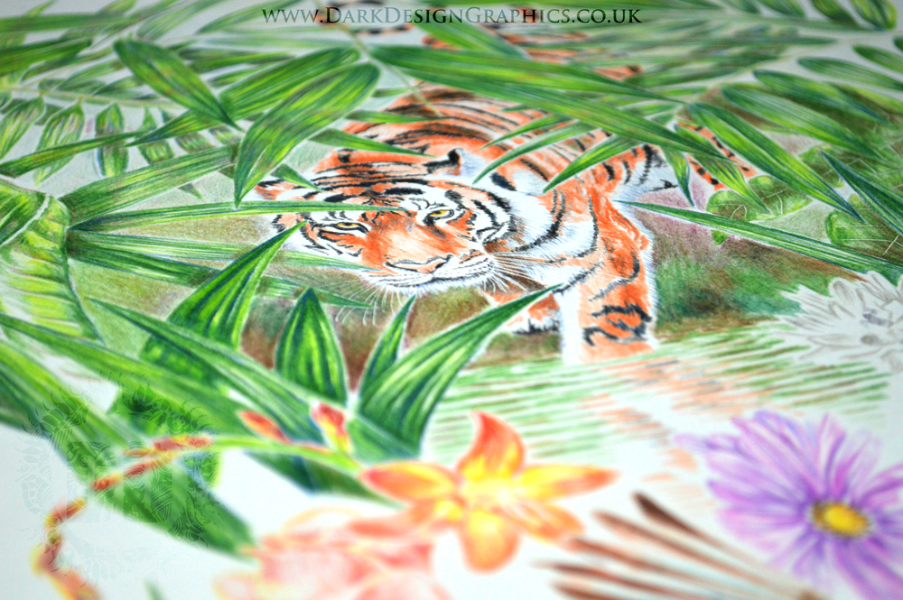 Tiger drawing Nature Tattoo design from Dark Design Graphics