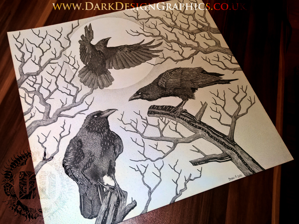 illustration for vinyl featuring 3 crows